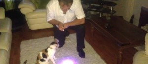 Pet Stain Remover Detecting